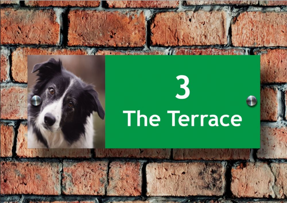 Acrylic Name & Number House Sign, Border Collie Dog Design